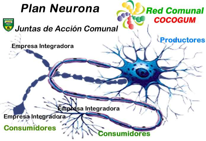 Plan Neurona Red Comunal