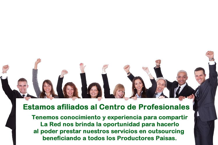 Profesionales outsourcing