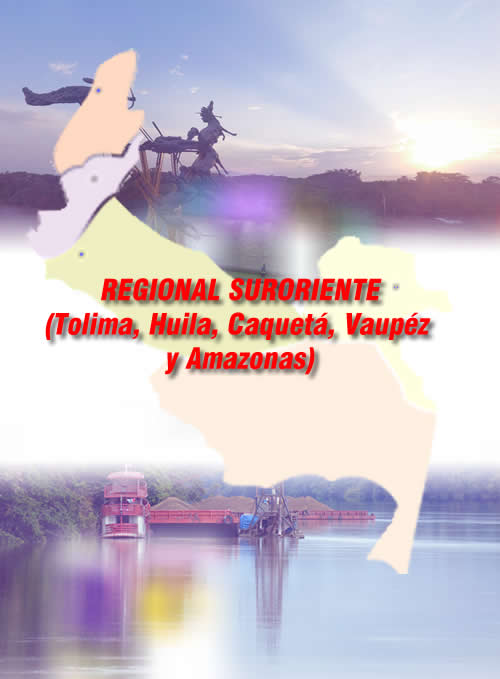 Regional Suroriente